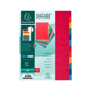 Comprar Juego de 12 separadores de cartulina multicolor en cartulina fuerte de 225 gr.